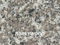 BURLYWOOD_swatch-w1000-h1000