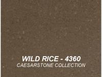 WILD_RICE_4360