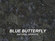 Wolf Palette Collection: Blue Butterfly Natural Granite