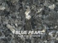 Wolf Palette Collection: Blue Pearl Natural Granite