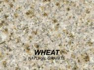 Wolf Palette Collection: Wheat Natural Granite