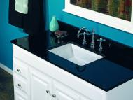 Wolf Palette Collection: Natural Stone in Absolute Black Vanity Top