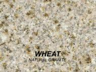 WHEAT_swatch-w1000-h1000